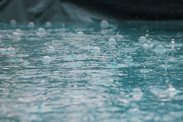 雨と水たまり
