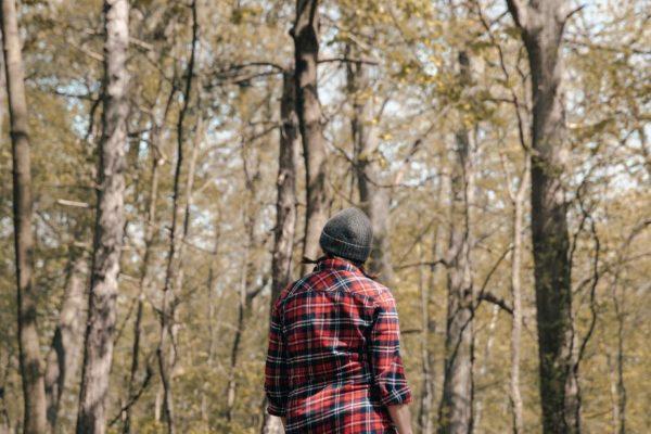森の中のキャンパー